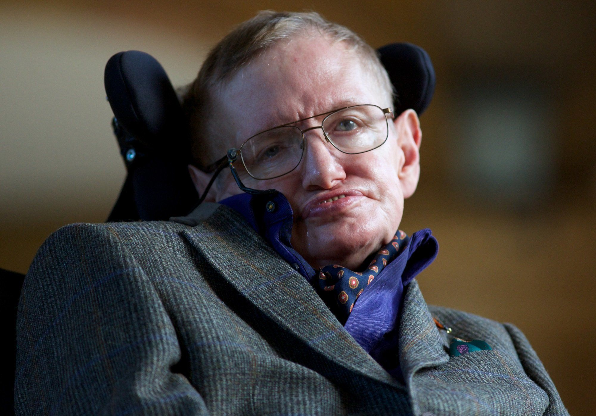 Stephen Hawking feared intelligent machines could destroy humans with weapons 'we cannot even understand'