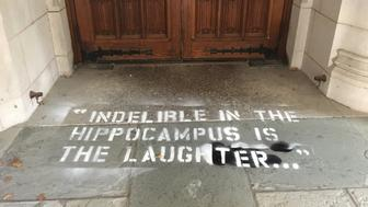 Laurel Raymond's photo of Yale Law School