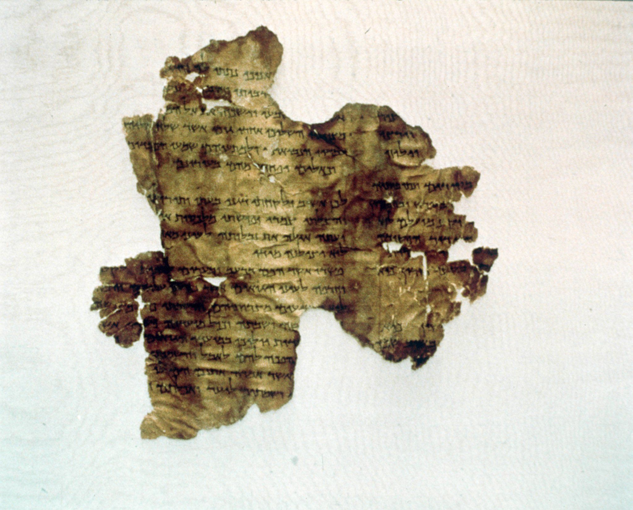 U.S. Bible museum says five Dead Sea Scrolls fragments fake