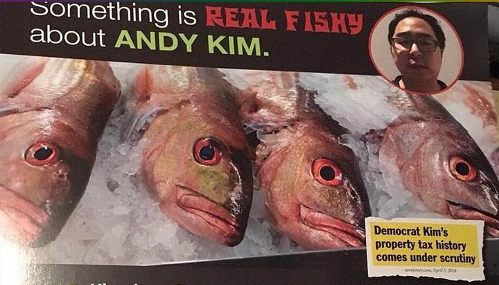A Republican mailer targeting Kim.