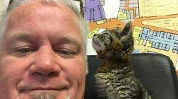 Mann rettet süßem Kätzchen das Leben – der Beginn einer