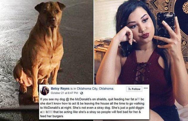 Respect: Σκύλος παριστάνει το αδέσποτο έξω από φαστφουντάδικο για να τρώει τζάμπα