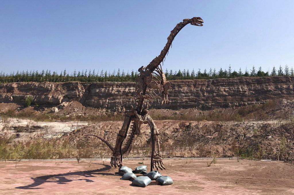 Bρήκαν κατά τύχη θαμμένους δεινόσαυρους στην