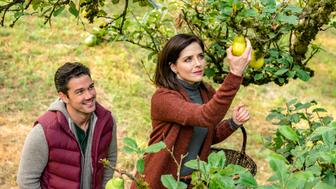 "Ryan Paevey and Jen Lilley in ""Harvest Love."""