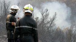Plus de 320.000 ha de forêts détruits par les incendies entre 2008 et