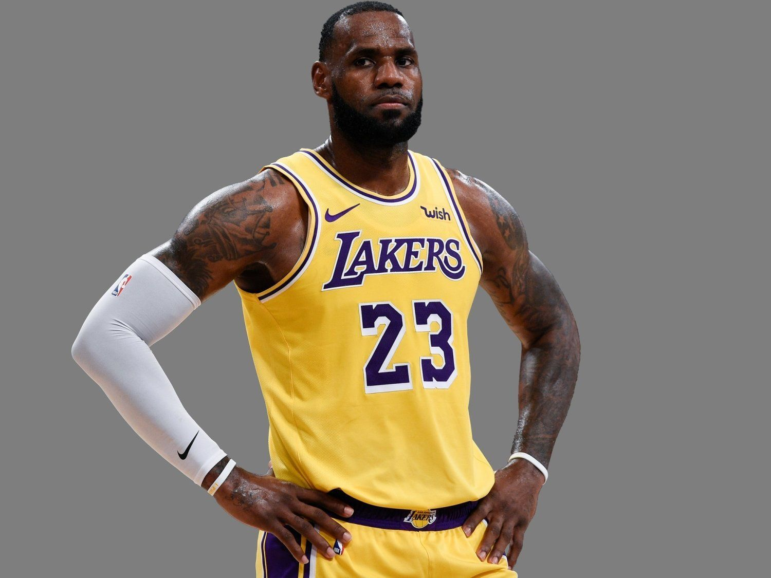LeBron James, as Los Angeles Lakers forward, graphic element on gray