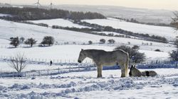 British Summer Time Ends With 'One Of Coldest October Days In A