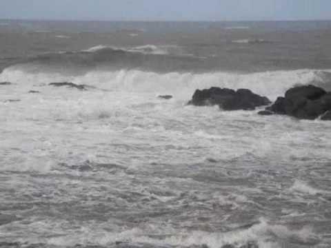 BMS : des vents assez forts souffleront sur les wilayas