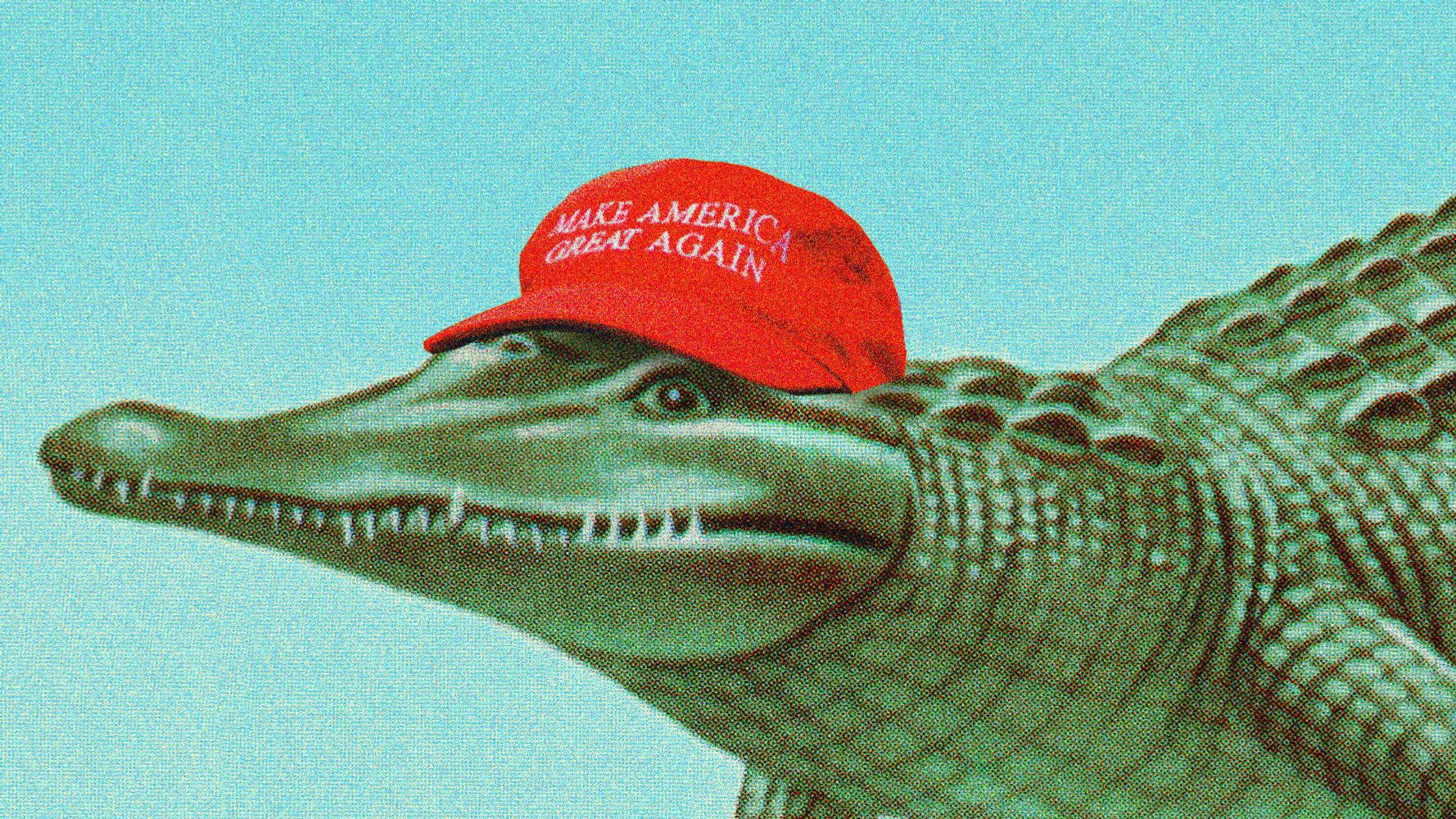 Image result for old republican dinosaur red cap