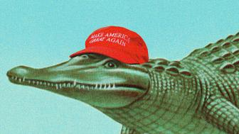 Gator with MAGA cap