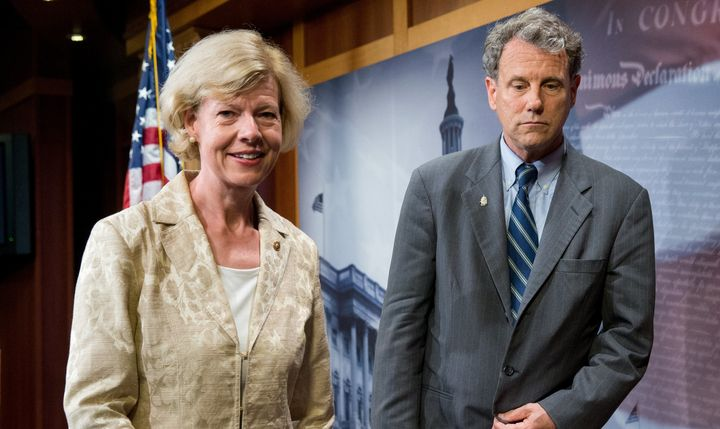 Sens. Tammy Baldwin (D-Wis.) and Sherrod Brown (D-Ohio) seem likely to hang on to their seats after Tuesday.