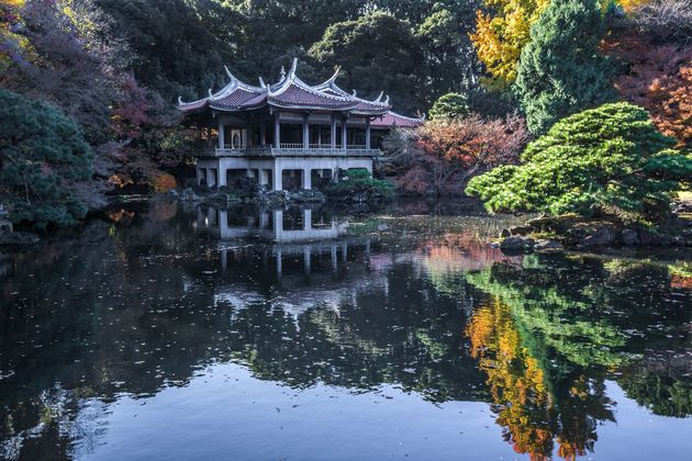 Εθνικός Κήπος στην Ιαπωνία έχασε μια μικρή περιουσία επειδή ένας υπάλληλος δεν χρέωνε εισιτήρια