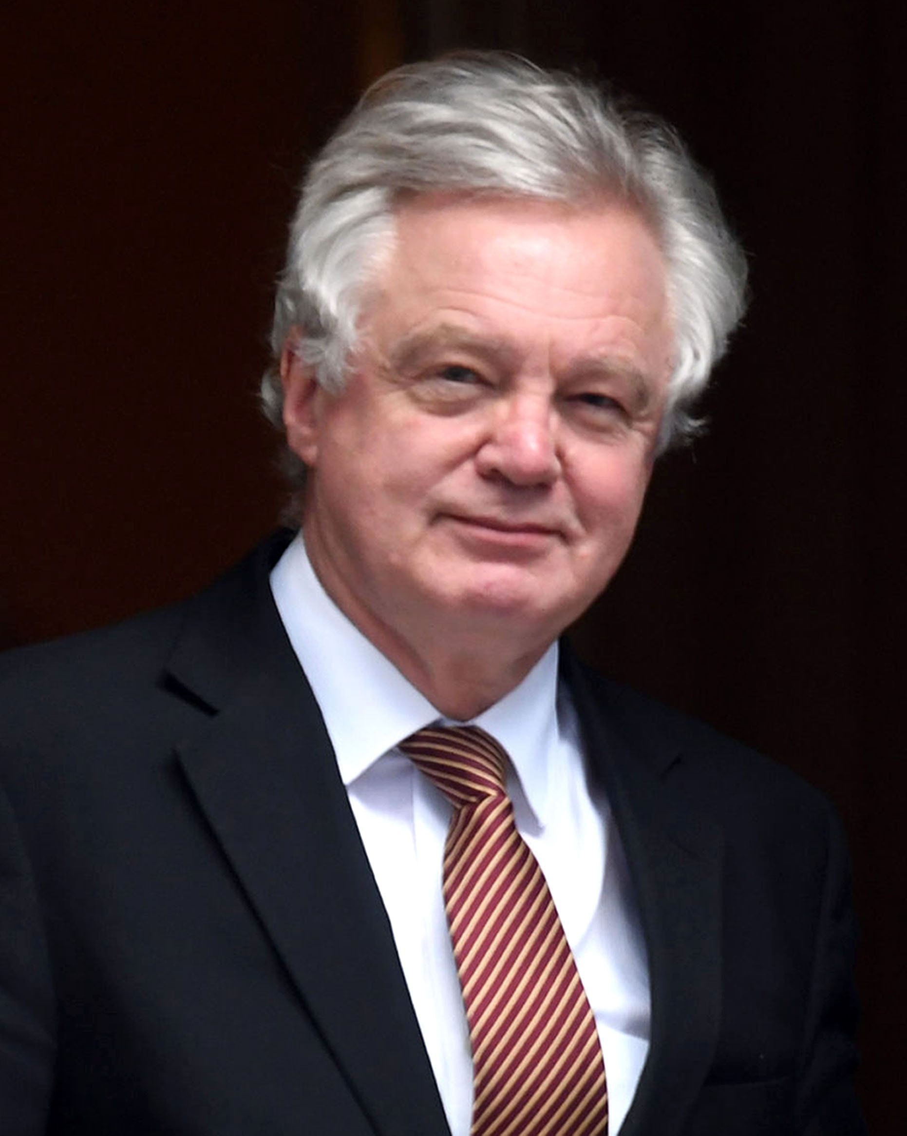 David Davis Slams 'Failed' Tory University And Housing Policies In 'Leadership'
