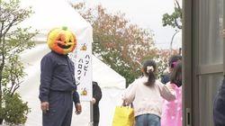 일본 야쿠자 조직이 어린이를 대상으로 할로원 행사를
