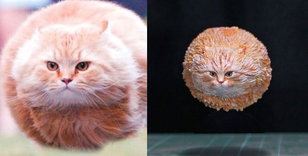 유명한 동물짤들을 3D 피규어로