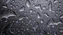 Une activité pluvio-orageuse affectera des wilayas du centre du