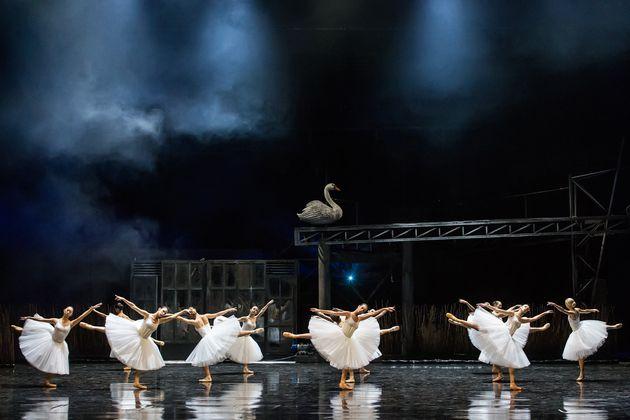 Μπαλέτο ΕΛΣ: «Λίμνη των Κύκνων» με φόντο ένα ερημωμένο