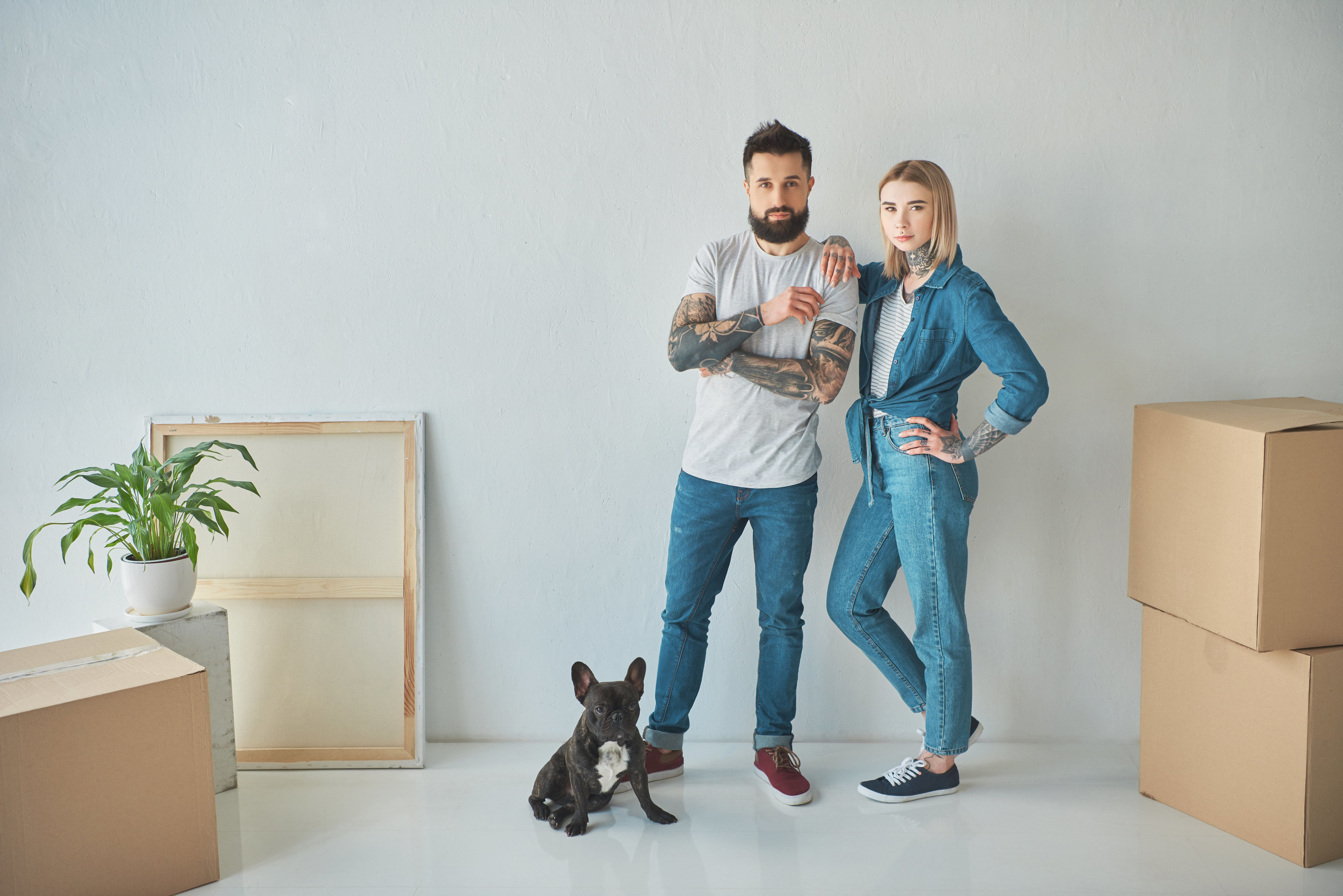 Downsizing Dogs - How Brit Pet Preferences Have Radically Changed As Homes Shrink In