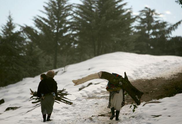Chutes de neige à Taza: retour à la normale sur les routes et les passages menant au mont