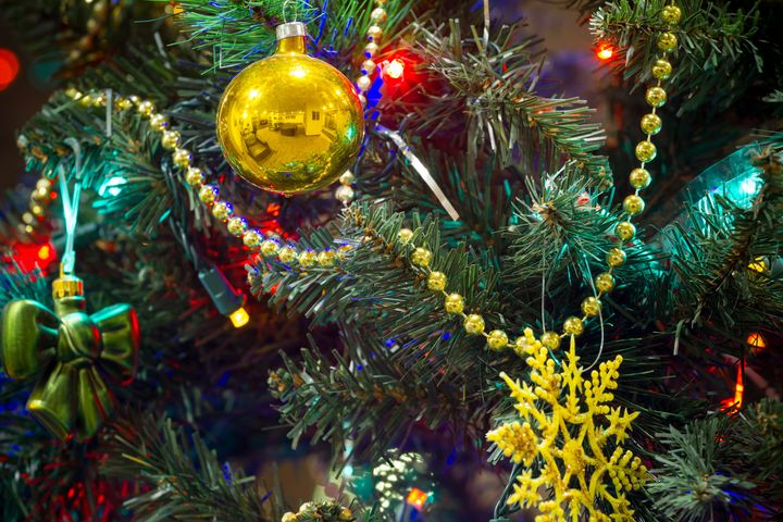 Chicago Christmas Tree Recycling City Offers Service At 23