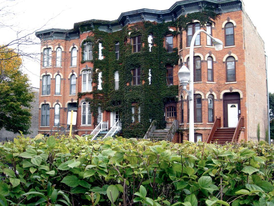 Homes in Bronzeville.