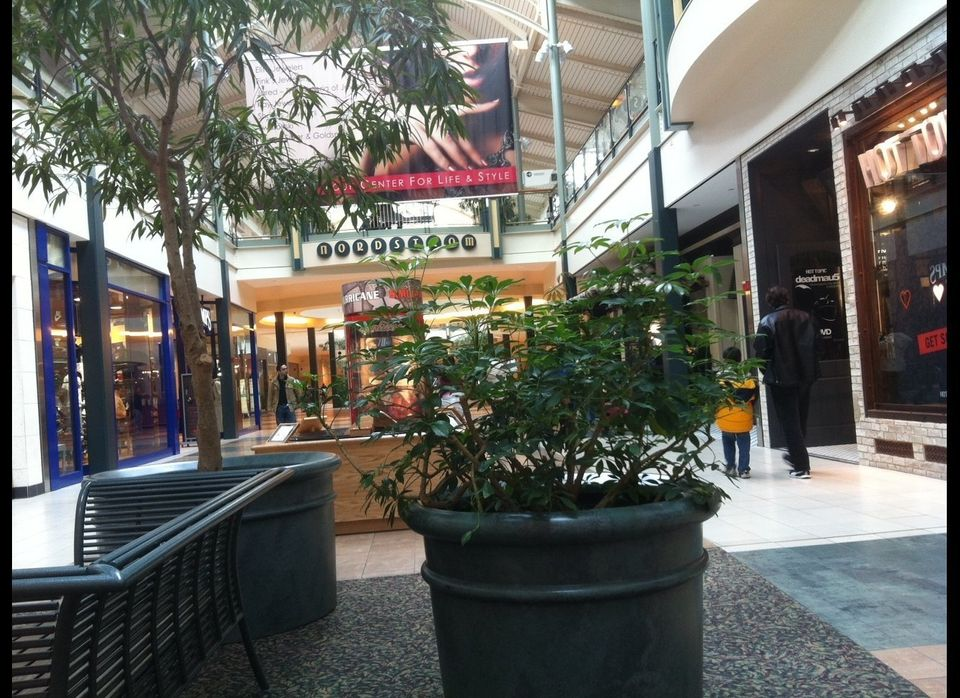 "<a href=""http://www.shopdullestowncenter.com/"" target=""_hplink"">Dulles Town Center</a> is neither a town, nor is it a center."