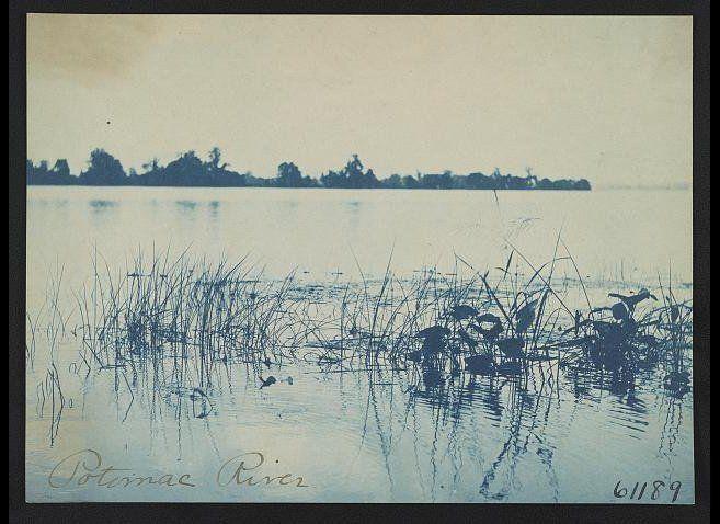 1898 photograph