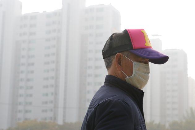 정부가 미세먼지 대책으로 폐기능 검진 도입을 검토하고