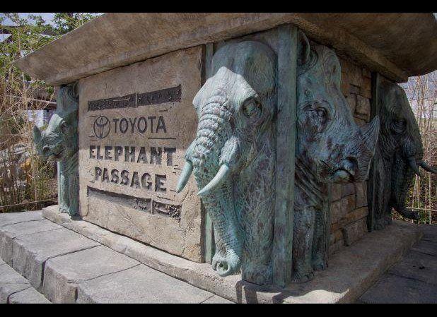 """Image <a href=""""http://www.facebook.com/DenverZoo"""" target=""""_hplink"""">via The Denver Zoo Facebook page</a>."""