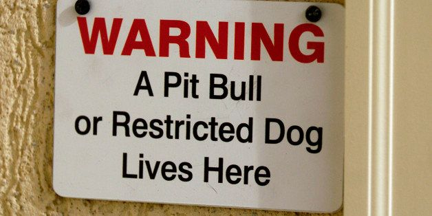 AURORA , CO 1-27-05 -- Pit-bull owner Wayne Forst has complied with all the city ordinances to keep his dog Lazerus in his ho