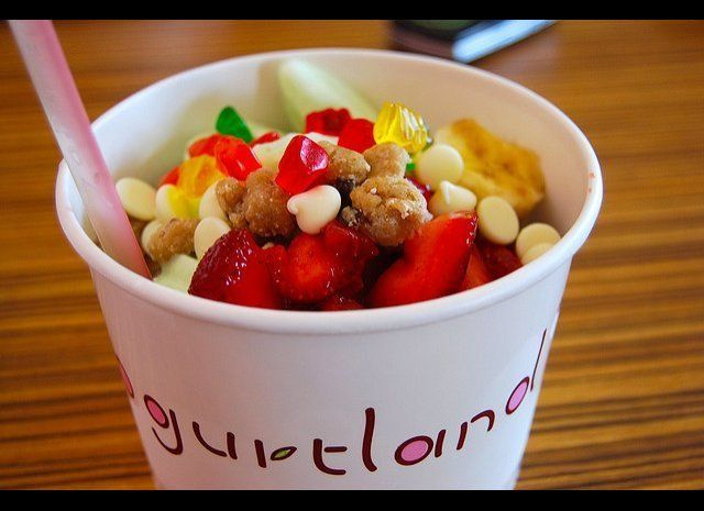 "<a href=""http://www.yogurt-land.com/"" target=""_hplink"">Yogurtland</a>