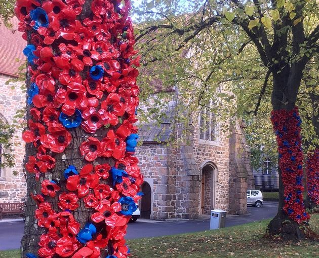 These 1,687 Remembrance Poppies Were Made From Old Plastic Bottles