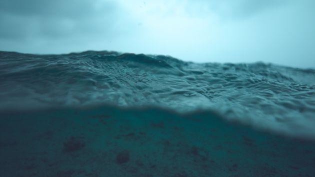 Έρευνα: Ο πυθμένας του ωκεανού αποσυντίθεται εξαιτίας της ανθρώπινης