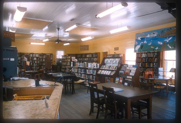 A public library in Lemon City was started in 1902 when ladies organized the Lemon City Library Association with dues of ten