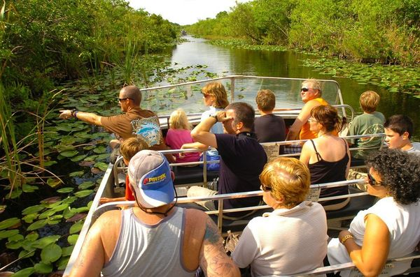 While airboating inside Everglades National Park is prohibited, check out tour companies just outside of the park's boundarie