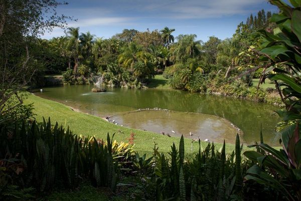 """Rather than take visitors to Fairchild Tropical Botanical Gardens, head to <a href=""""http://pinecrest-fl.gov/index.aspx?page=3"""