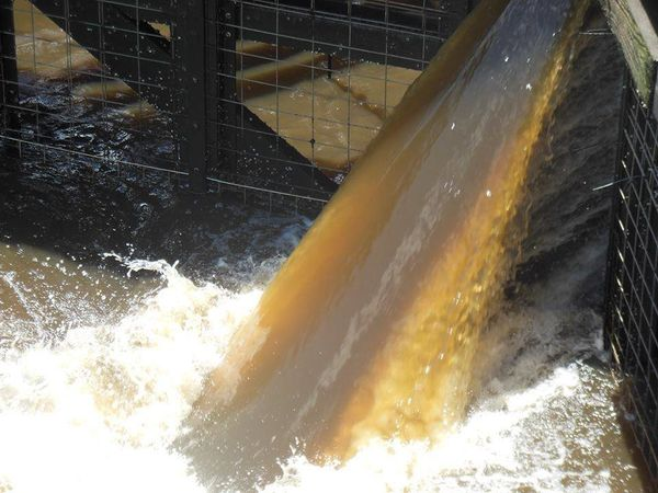 """Polluted water entering the estuary at the Stuart Locks"""