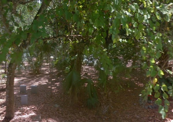 Also known as Cocoplum Cemetery, the lot is home to many of Miami's pioneers but is now a forgotten piece of history. While h