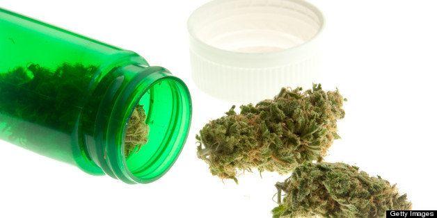Simulated medical marijuana illuminated by a light box.