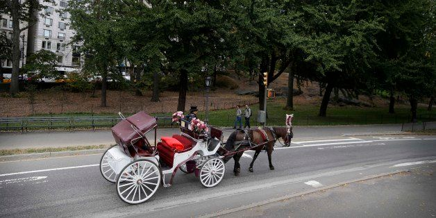 In this Oct. 23, 2013 photo, passengers enjoy a horse-drawn carriage ride in New York City's Central Park. The practice of