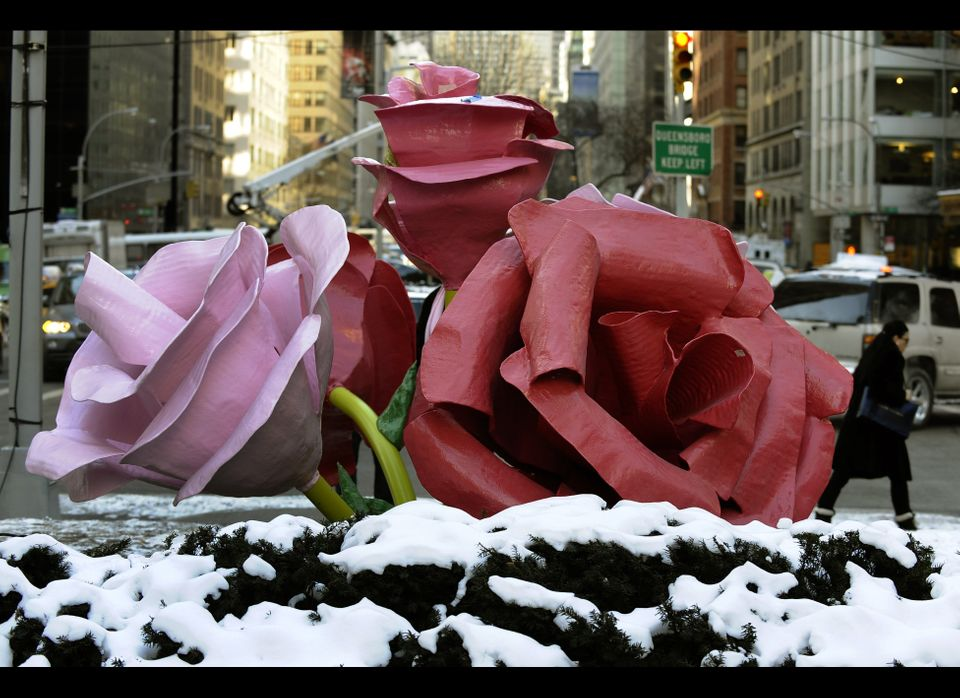 Some of Will Ryman's 'The Roses', a new site-specific installation on New York City's  Park Avenue January 24,2011 . The inst