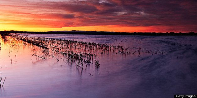 Sunset colors flooded farmlands in Sacramento Delta.