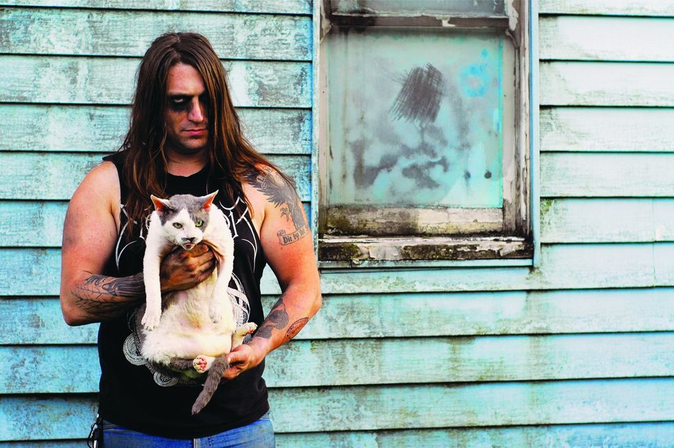 "From <a href=""http://amzn.to/1hwDice"">Metal Cats</a> by Alexandra Crockett, published by powerHouse Books."