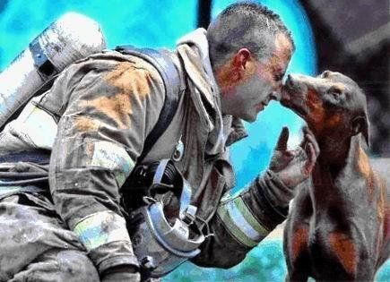 """This firefighter <a href=""http://imgur.com/gallery/Gub3v"">saved this dog</a> from her burning home."" (Via Imgur)"