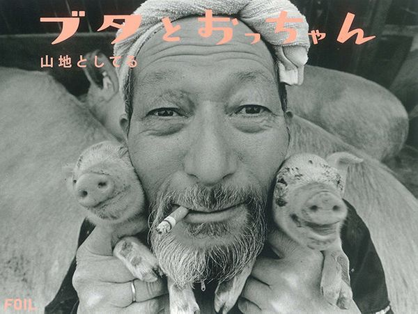 """Toshiteru Yamaji, Pigs and Papa, FOIL, 2010"""