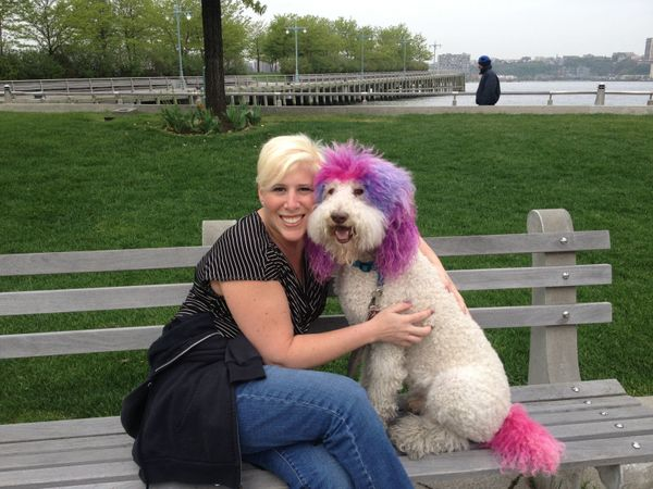 """Veterinarian Lori Pasternak (pictured above with Chilly, her dog and the clinic's mascot) opened <a href=""""https://www.faceboo"""