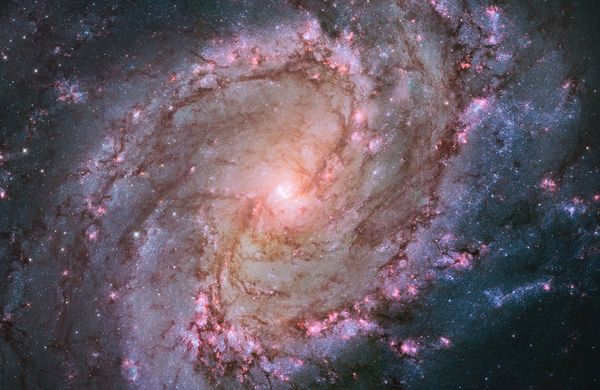 "<span style=""text-decoration:underline;""></span>Hubble image of the barred spiral galaxy M83, the <a href=""http://hubblesite."