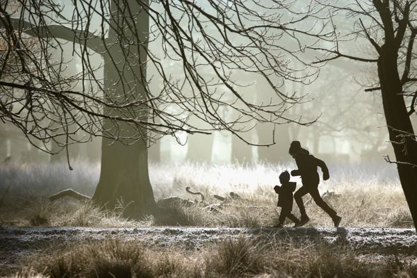 A young family enjoy a brisk early morning walk as overnight frost clings to the fauna and flora at the National Trust's Dunh