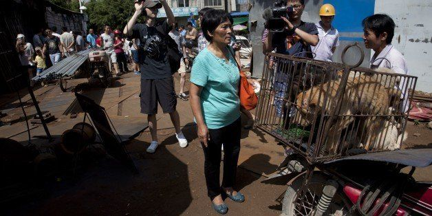 This picture taken on June 20, 2015 shows animal-loving Yang Xiaoyun (C) going around buying some 100 dogs at a market in Yul