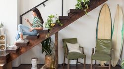 GREEN LIVING: Hanging House Plants To Take Your Urban Jungle To A Whole Other